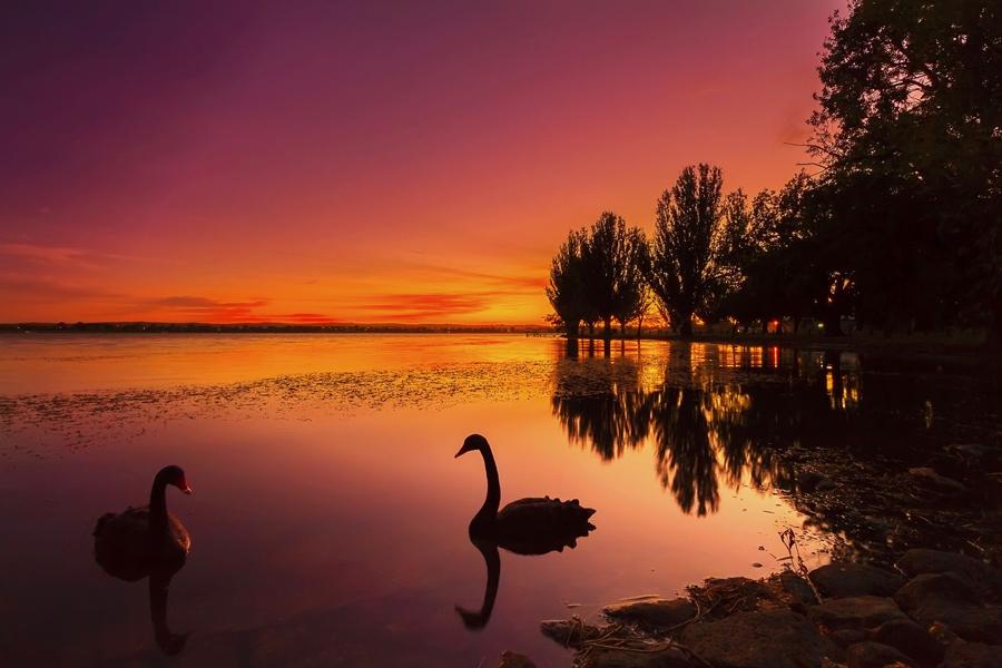 Ballarat Charter for Compassion Australia